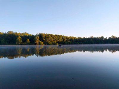 lac 2